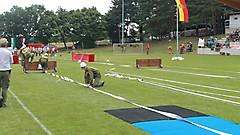 (c) FJ Stegersbach
