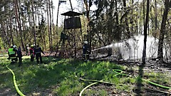 Waldbrand in Stegersbach
